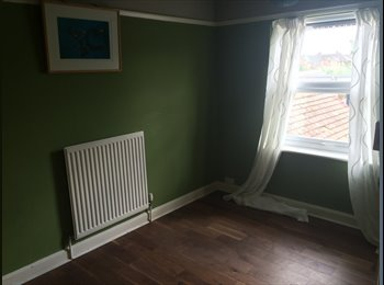 Double room to rent in lovely 3 bed house to share with 1...