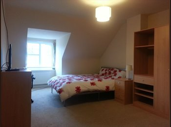 EasyRoommate UK - LARGE ROOM FOR QUIET PROFESSIONAL  - Shinfield, Reading - £455 pcm