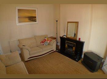 EasyRoommate UK - Bright Double Room  - Roath, Cardiff - £300 pcm