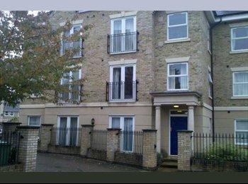 EasyRoommate UK - Double Room, Southampton (SO15) - Southampton, Southampton - £398 pcm