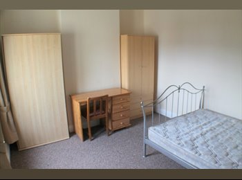 EasyRoommate UK - Bright Spacious Double Room - Roath, Cardiff - £285 pcm