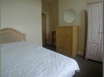 EasyRoommate UK - Good Standard and Bright Room  - Roath, Cardiff - £270 pcm