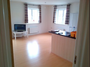 EasyRoommate UK - Room Available in Modern Two Bed Flat - Mile End, Colchester - £337 pcm