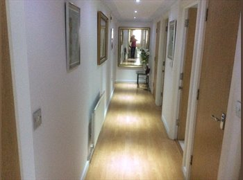 EasyRoommate UK - Double room to rent in 5star apartment in Bray - Bray, Maidenhead - £650 pcm