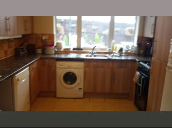 EasyRoommate UK - double room for rent - Darlington, Darlington - £360 pcm