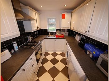 Double Room to Let in Shared Student House