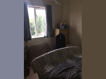 EasyRoommate UK - Great home in the centre of southampton - Southampton, Southampton - £450 pcm