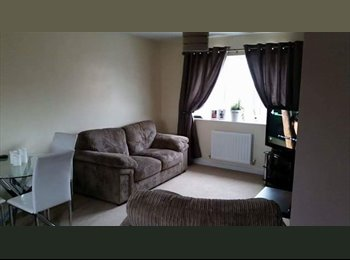 EasyRoommate UK - 1 double room bedroom for rent in spacious coach house. - Ipswich, Ipswich - £400 pcm
