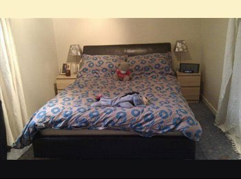 EasyRoommate UK - Double room in 3 bed house for professional female - Northfield, Aberdeen - £500 pcm