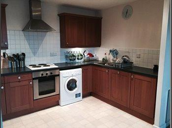 EasyRoommate UK - Large master bedroom with En suite bathroom - Slough, Slough - £600 pcm