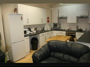 EasyRoommate UK - Ensuite bedroom available from January 2016  - Upperthorpe, Sheffield - £389 pcm