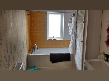 EasyRoommate UK - Double room, lovely en suite bathroom - Easton, Bristol - £390 pcm