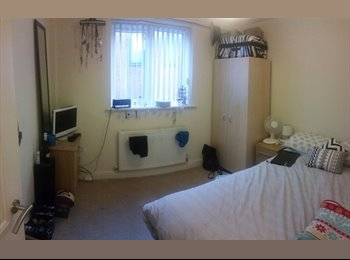 EasyRoommate UK - Double room available in 3 bed flat - Whalley Range, Manchester - £315 pcm