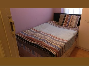 Fantastic single room available now