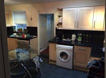 EasyRoommate UK - Double room to rent in central Jesmond - Jesmond, Newcastle upon Tyne - £385 pcm