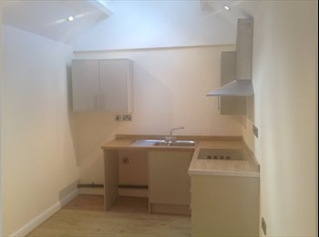 EasyRoommate UK - Spacious one bedroom flat  - Lincoln, Lincoln - £450 pcm