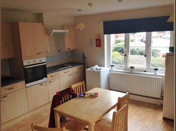 Choice of rooms in a brilliant low cost property in Merton...