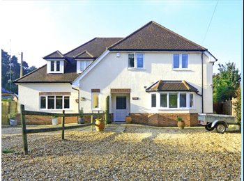 EasyRoommate UK - Double room to rent - Bordon, East Hampshire and Havant - £480 pcm