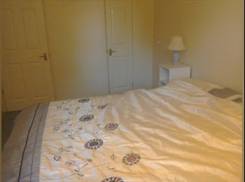 EasyRoommate UK - Professional person wanted - Chichester, Chichester - £400 pcm