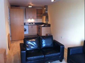 EasyRoommate UK - Apartment in Leeds - Leeds Centre, Leeds - £650 pcm