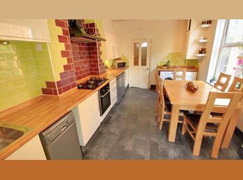 EasyRoommate UK - Well maintained home in beautiful location with large, comfortable rooms. - Edgbaston, Birmingham - £350 pcm