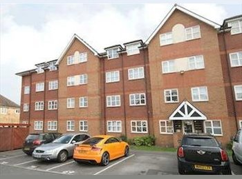 EasyRoommate UK - Room To Let In A Gorgeous Modern Apartment - Baguley, Manchester - £530 pcm