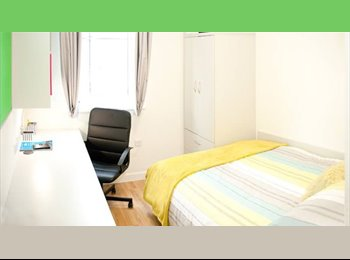 EasyRoommate UK - Room available to rent - Colchester, Colchester - £528 pcm