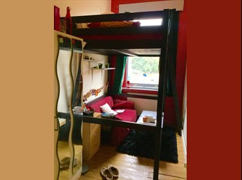 1 Nice double bed mezzanine single room (NOW) 1 massive...