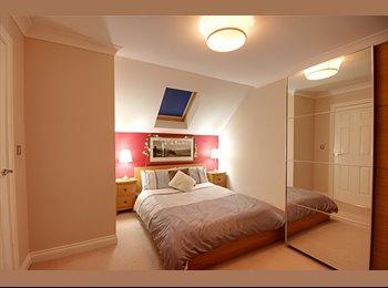 EasyRoommate UK - Double room in immaculate house share - Bishop's Stortford, Bishop's Stortford - £525 pcm