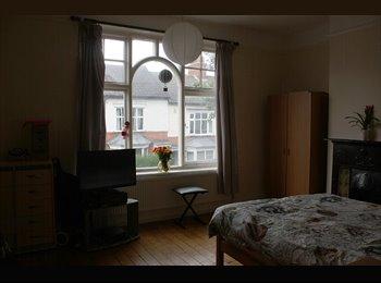 EasyRoommate UK - Huge beautiful room in smoking friendly house - Dane Hills, Leicester - £265 pcm