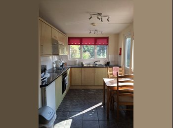 EasyRoommate UK - House share in Oakwood, 5 mins from tube - Southgate, London - £500 pcm