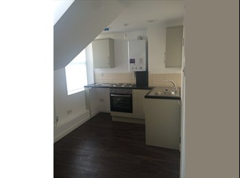 Brand New Fully Furnished 1 bed / Studio Apartment-...