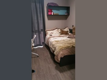 EasyRoommate UK - student ensuite room - £86pw!!!!!!! - Lincoln, Lincoln - £380 pcm