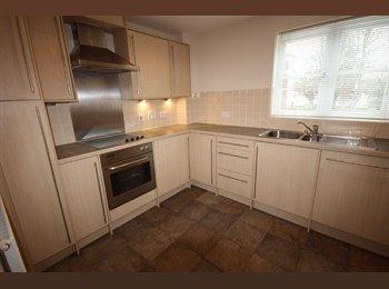 EasyRoommate UK - Decent Apartment in Leam!  - Royal Leamington Spa, Leamington Spa - £550 pcm