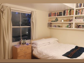 Spacious room in two-floor flatshare