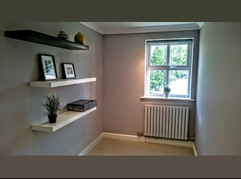 Immaculate single room available