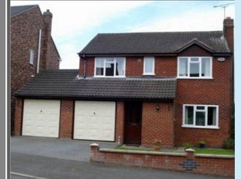EasyRoommate UK - rooms to rent in detatched house - Pilsley, Chesterfield - £350 pcm