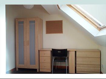 EasyRoommate UK - Modern 4 bed student house, Botanic - £320 pcm