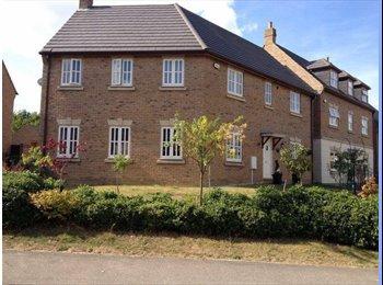 EasyRoommate UK - Lovely furnished 'smallish' double bedroom - Grange Farm, Milton Keynes - £400 pcm