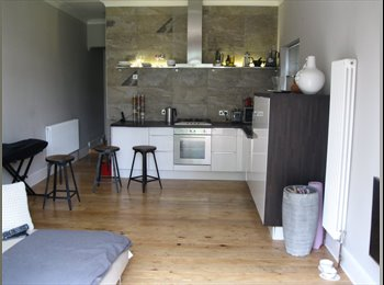 EasyRoommate UK - Rm avail. now in lovely Victorian garden flat, London - £485 pcm