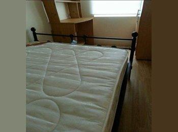 EasyRoommate UK - Botanic Avenue - Ireton Street,2 bedroom flat, £225 per month - Belfast, Belfast - £225 pcm