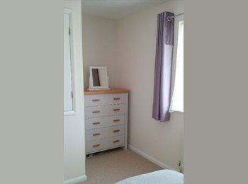 Nicely furnished double bedroom