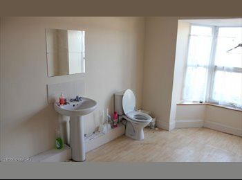 EasyRoommate UK - 1 room available in a 5 bed student house - Devonport, Plymouth - £477 pcm
