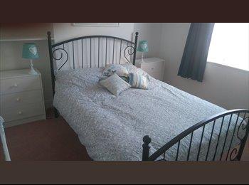 EasyRoommate UK - Newly decorated double room - Bury St Edmunds, Bury St. Edmunds - £375 pcm