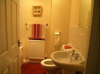 EasyRoommate UK - Room available in Stevenage - Pingreen, Stevenage - £100 pcm