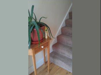 EasyRoommate UK - Room to rent - Thornton Heath, London - £500 pcm
