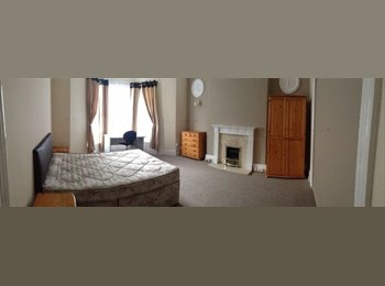 EasyRoommate UK - LARGE ROOM FOR RENT-75/w-Close to University - St Judes, Plymouth - £325 pcm