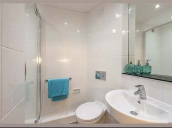 EasyRoommate UK - Bronze Studio Flat to rent!!! Only student  - Cambridge (Central South), Cambridge - £776 pcm