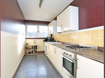 Double room in a 3 bedroom flat at Gordon Mills Road
