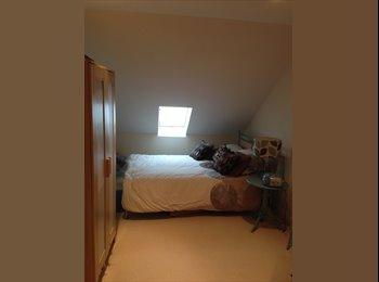 EasyRoommate UK - Large loft room available near Petersfield  - Liss, East Hampshire and Havant - £530 pcm